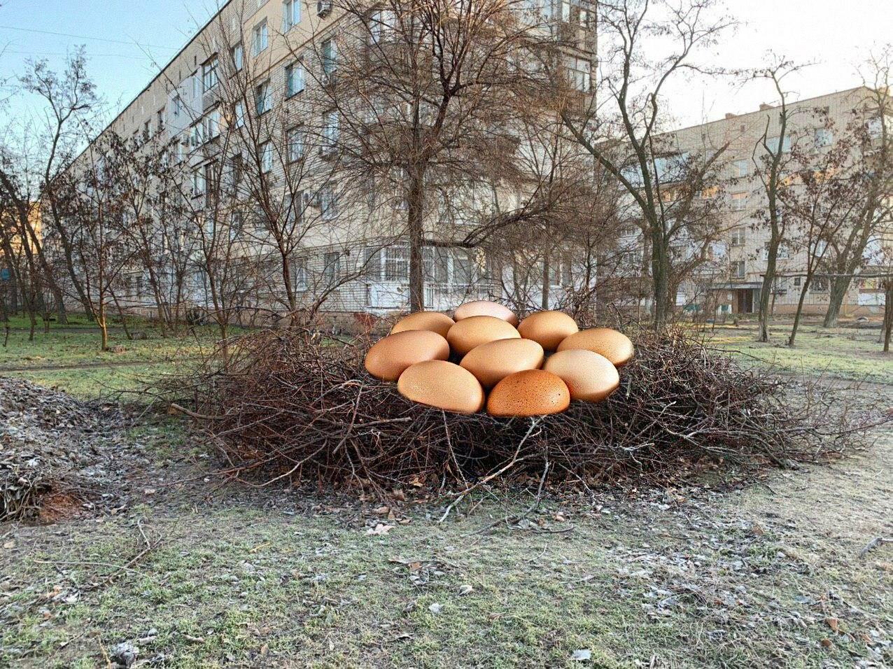 Бердянск в опасности! Обнаружены новые формы жизни! (фото), фото-2