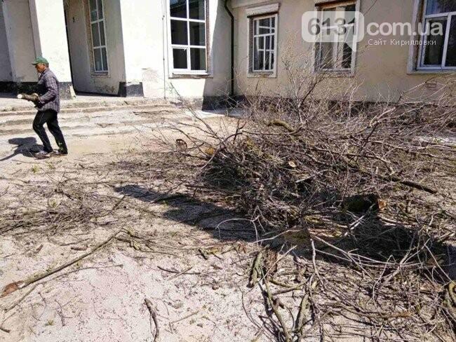 На території Кирилівської ОТГ висадять новий парк, фото-2