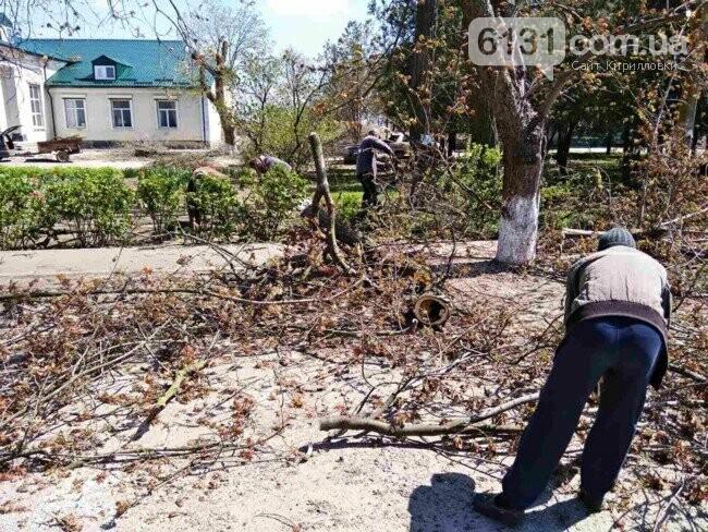 На території Кирилівської ОТГ висадять новий парк, фото-3