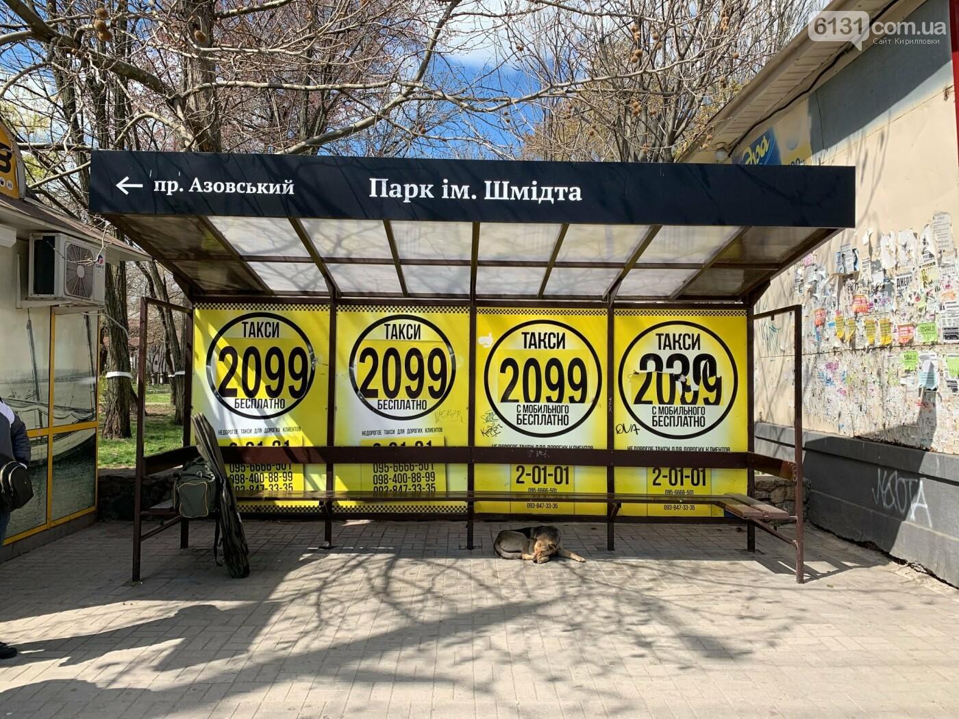 Новые современные велопарковки в Бердянске, фото-9